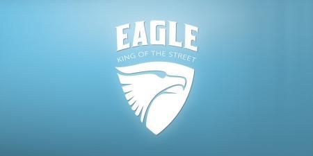 עיצוב לוגו - מתיחת פנים ללוגו Eagle Scooter  קורקינט איגל - eagle-01-
