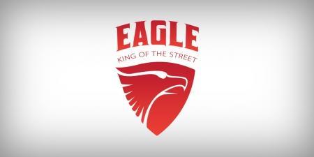 עיצוב לוגו - מתיחת פנים ללוגו Eagle Scooter  קורקינט איגל - eagle-